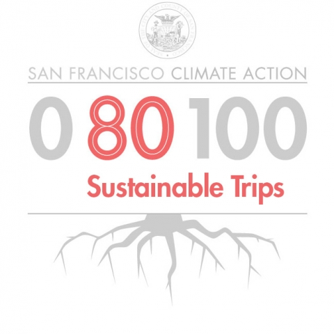 80% Sustainable Trips graphic